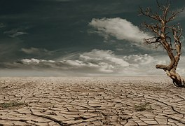 desert-279862__180 (1)