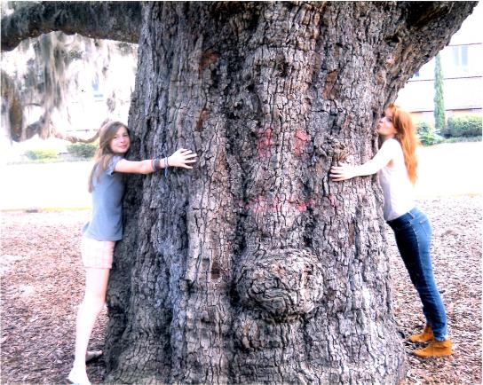 tree-huggers
